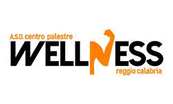 Centro Palestre Wellness